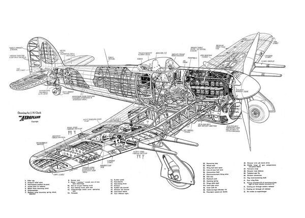 Hawker Typhoon 1B Cutaway Drawing