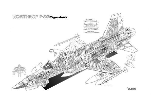 Northrop F-5G Tigershark Cutaway Drawing
