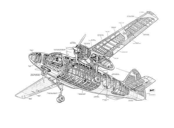 Percival P66 Pembroke Cutaway Drawing