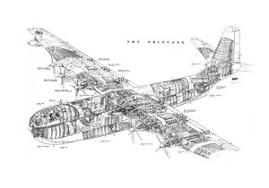 Saro SR45 Princess Cutaway Drawing