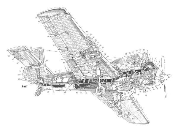 Short Seamew Cutaway Drawing