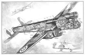 AW38 Whitley Cutaway Drawing