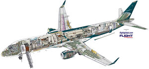 Embraer Lineage 1000 cutaway