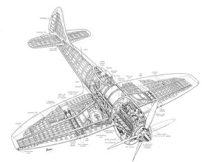 Hawker Tempest MkV Cutaway Drawing