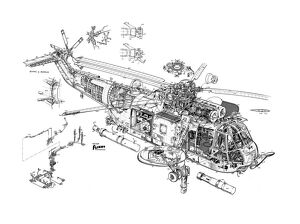 Westland Sea King Cutaway Drawing